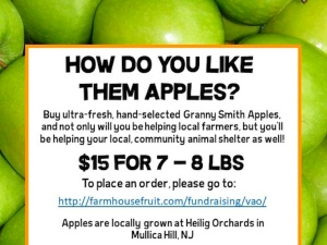 Granny Smiths for a Cause
