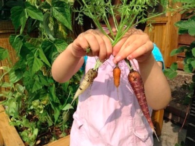 Teach Food Growing Early