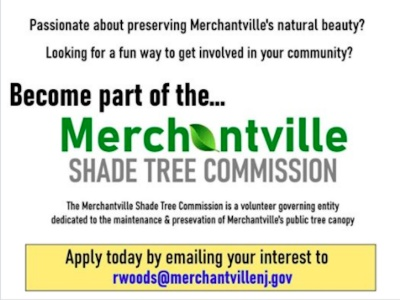 Volunteer for Shade Tree