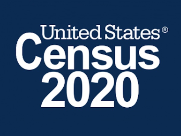 Borough Census 2020
